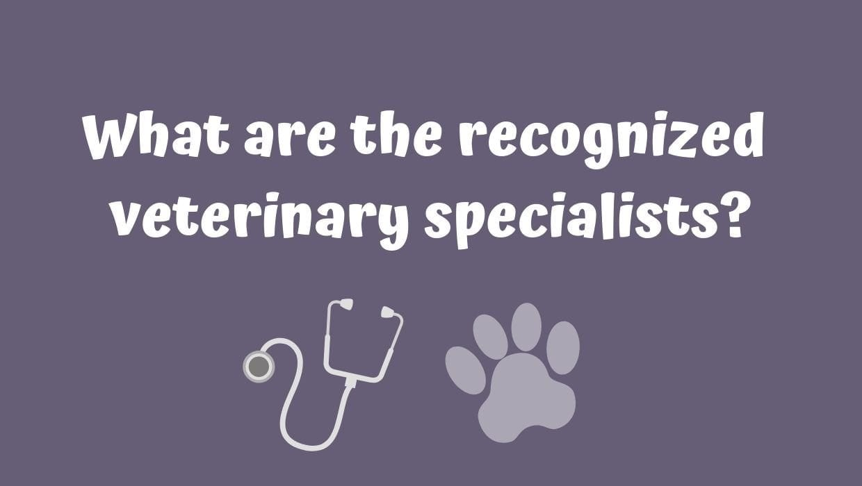 What are the recognized veterinary specialists?
