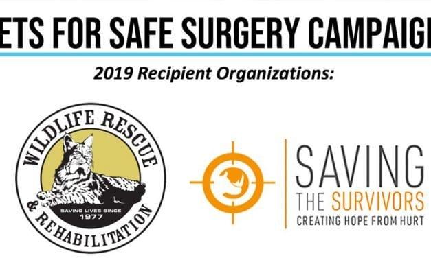 Arbutus Medical's Vets for Safe Surgery – Award