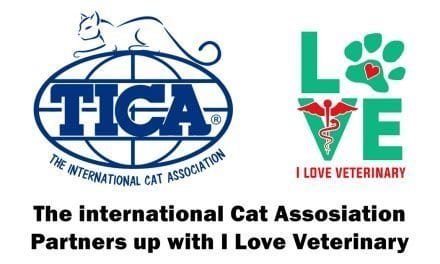 iLoveVeterinary.com Partners with TICA
