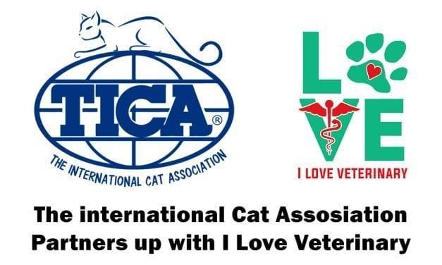 iLoveVeterinary.com Partners with TICA