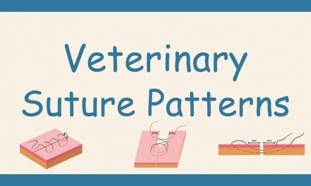 Veterinary Suture Patterns