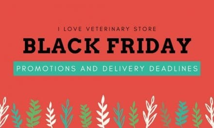 Black Friday Promotions and Delivery Deadlines