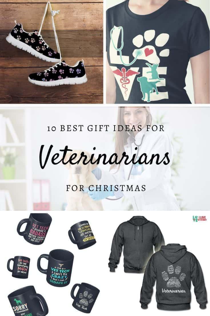 Best Gift Ideas for Veterinarians for Christmas