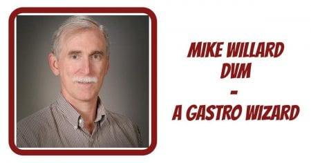 Dr Mike Willard – A Gastro Wizard!