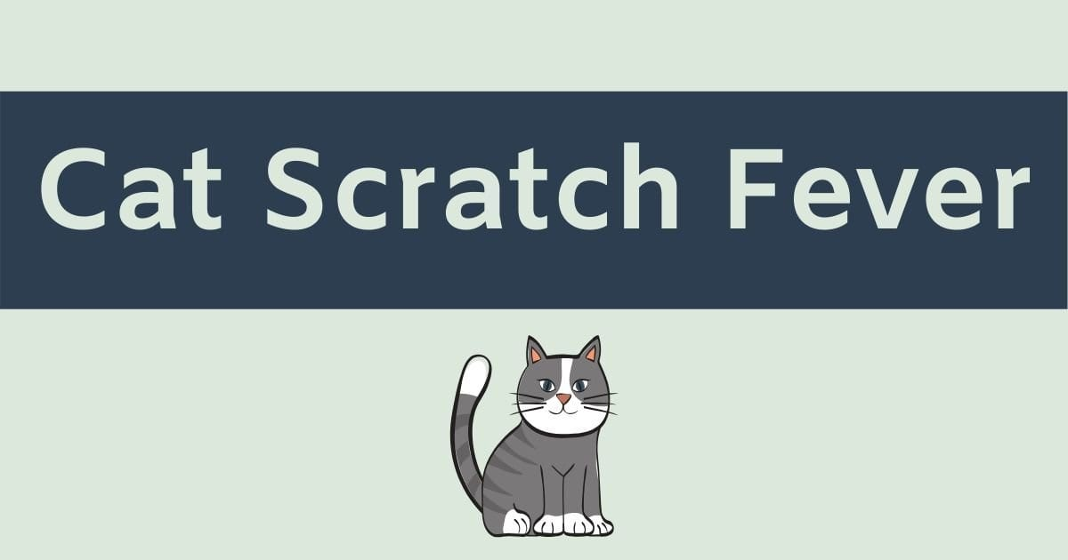 Cat Scratch Fever – What is it, cause, protection