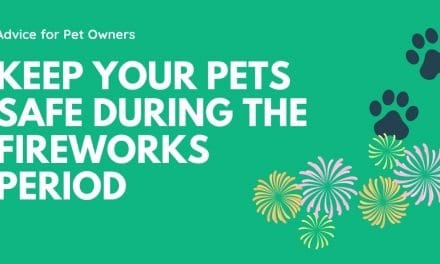 Keep your Pets safe during the fireworks period