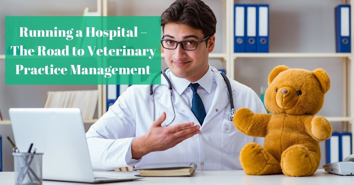 Running a Hospital – The Road to Veterinary Practice Management