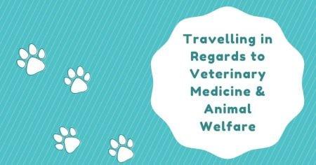 Traveling in Regards to Veterinary Medicine & Animal Welfare