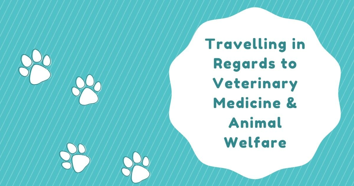 Travelling in regards to Veterinary Medicine and Animal Welfare I love veterinary