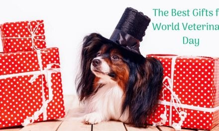 The Best Gifts for World Veterinary Day