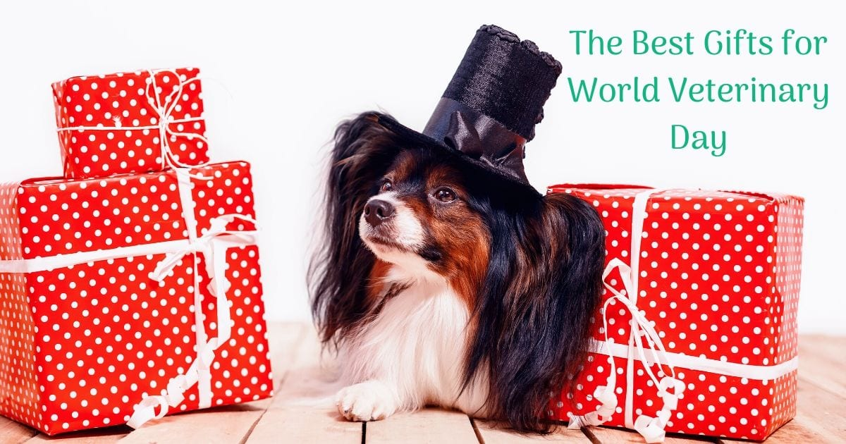 The Best Gifts for World Veterinary Day I Love Veterinary