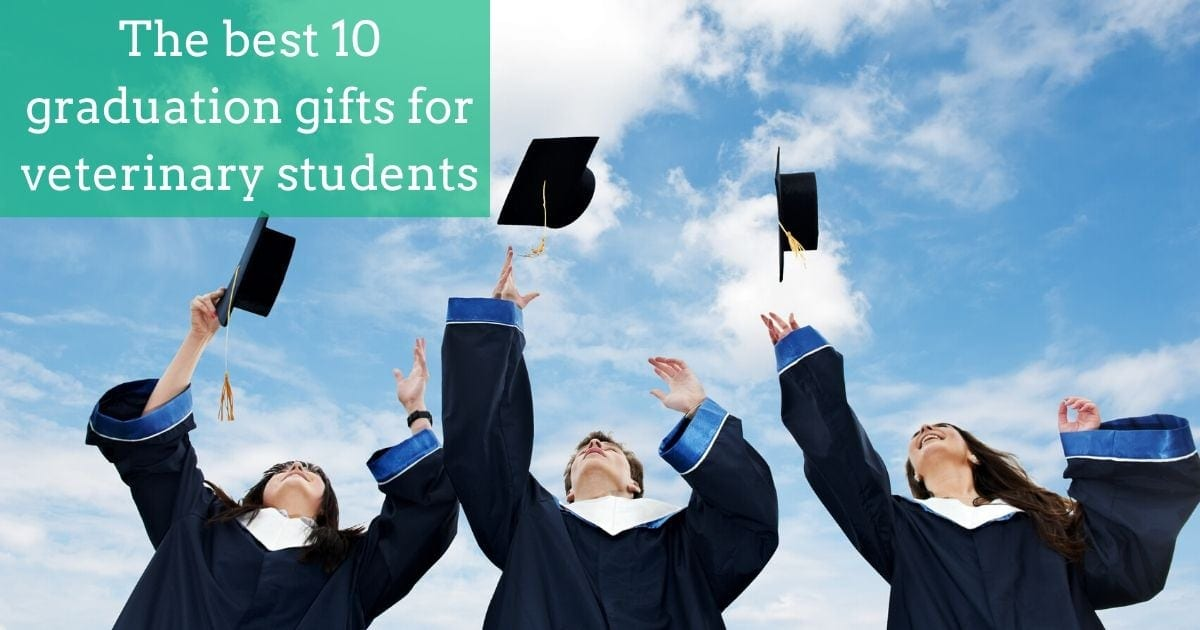 The best 10 graduation gifts for veterinary students I Love Veterinary
