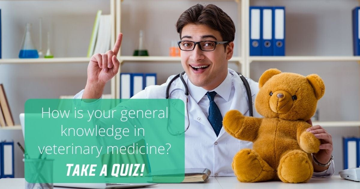 How is your general knowledge in veterinary medicine I Love Veterinary - Blog for Veterinarians, Vet Techs, Students