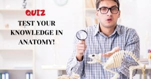 TEST YOUR KNOWLEDGE IN ANATOMY! quiz by I Love Veterinary