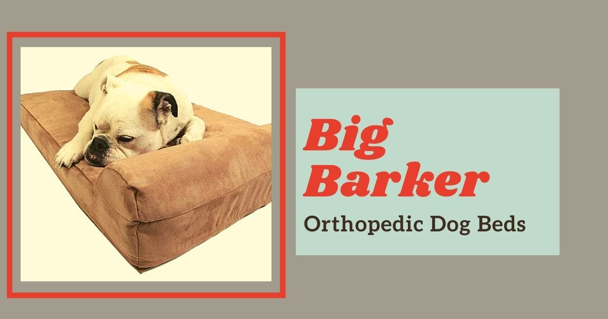 Big Barker dog bed review - I Love Veterinary