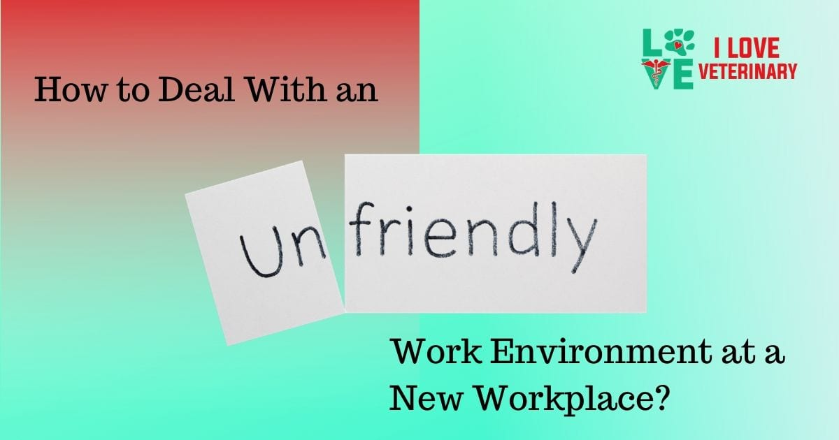 How to Deal With an Unfriendly Work Environment at a New Workplace - I Love Veterinary