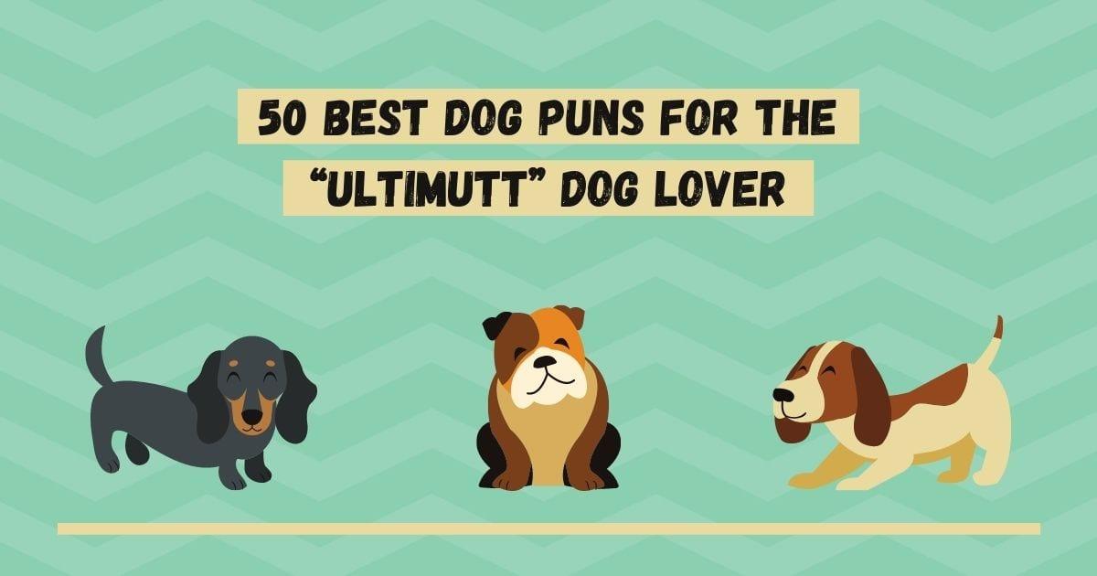 """50 Best Dog Puns for the """"Ultimutt"""" Dog Lover - I Love Veterinary"""