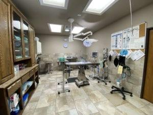 Vet Clinic of the Week: East Lake Veterinary Center practice - I Love Veterinary