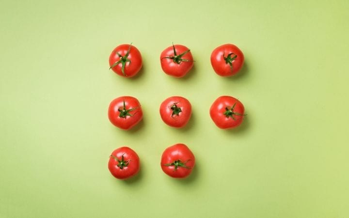 Tomatoes, Can Dogs eat Tomatoes? I Love Veterinary