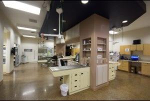 Alpine Animal Hospital Treatment - I Love Veterinary