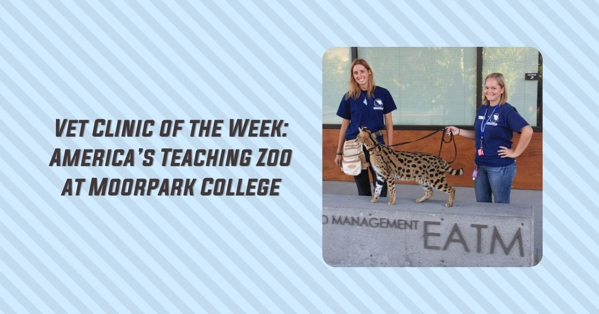 Vet Clinic of the Week - America's Teaching Zoo at Moorpark College - I Love Veterinary