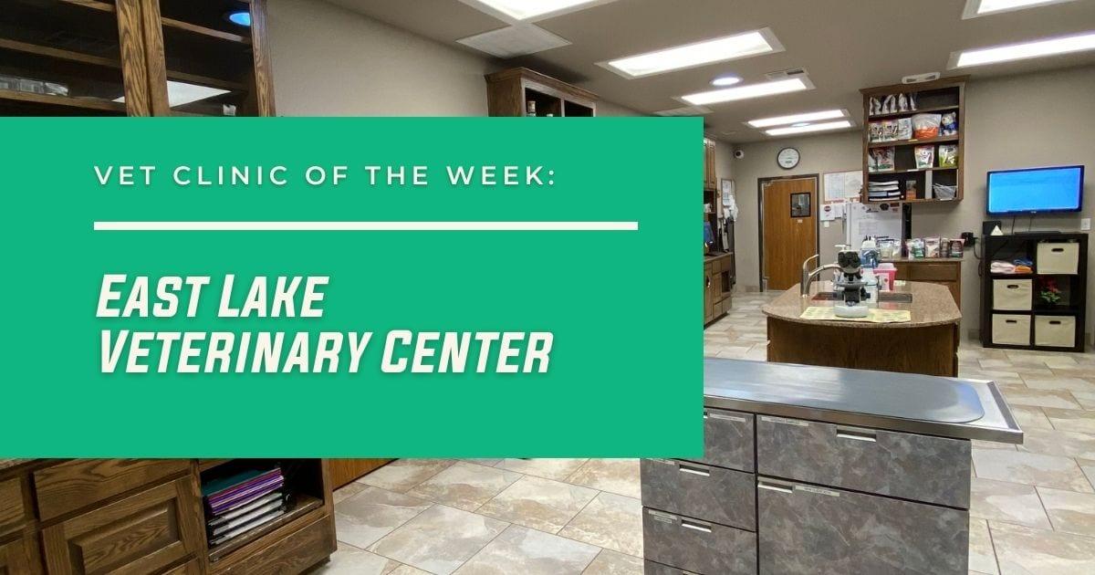 Vet Clinic of the Week: East Lake Veterinary Center - I Love Veterinary