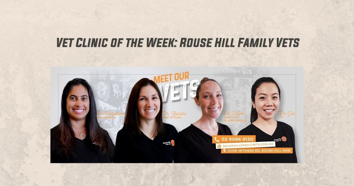 Vet Clinic of the Week - Rouse Hill Family Vets - I Love Veterinary
