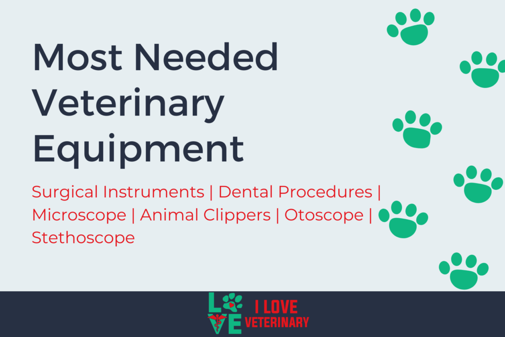 Most Needed Veterinary Equipment 1 I Love Veterinary - Blog for Veterinarians, Vet Techs, Students