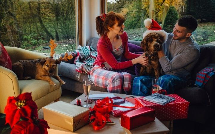 Pets at Christmas with their owners, Top Pet Safety Tips for the Festive Season - I Love Veterinary