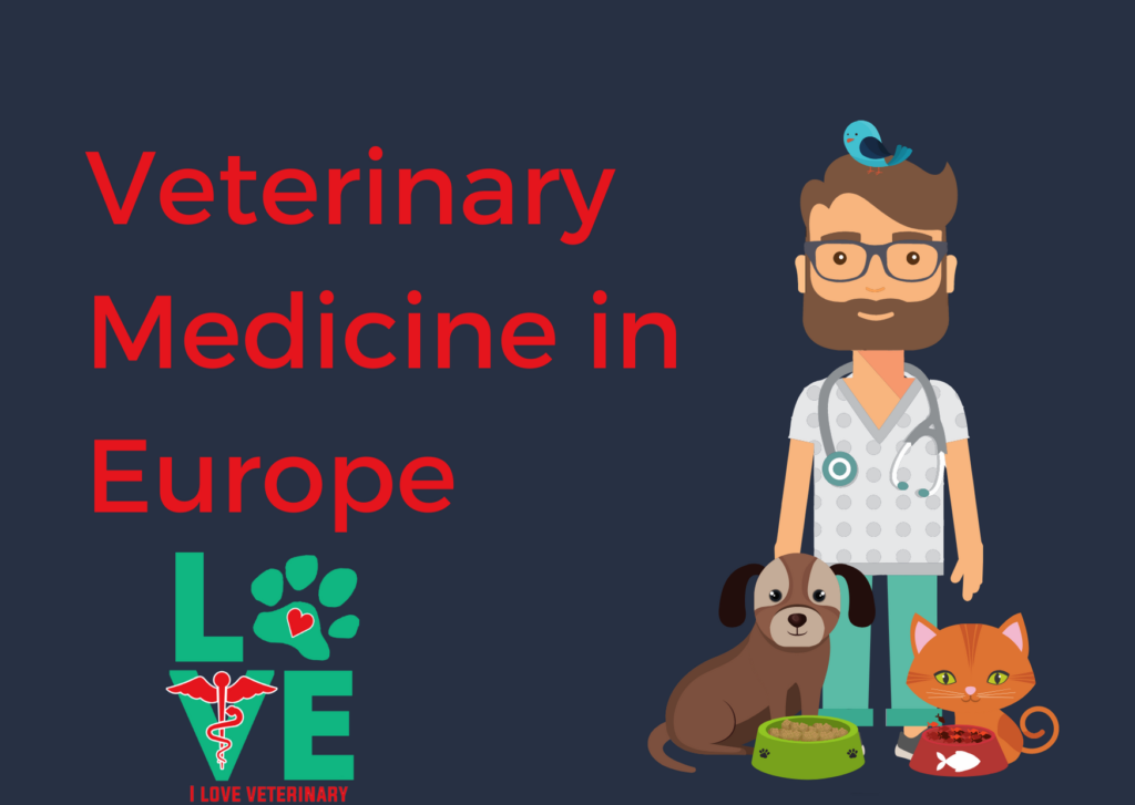 Veterinary Medicine in Europe I Love Veterinary - Blog for Veterinarians, Vet Techs, Students