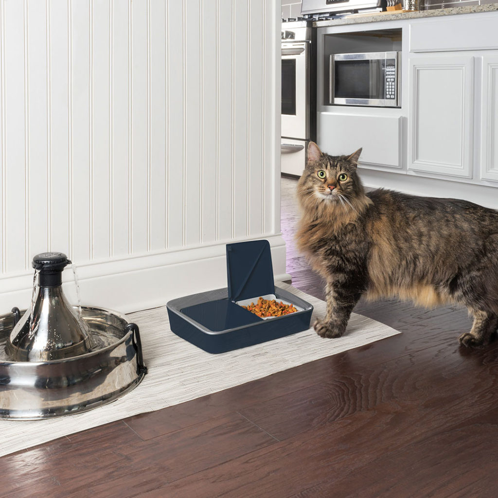 Digital Two Meal Feeder, Top 5 Customer Rated Pet Tech Products from Petsafe - I Love Veterinary