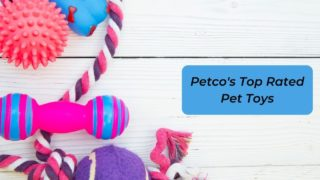 Petco's Top Rated Pet Toys - I Love Veterinary