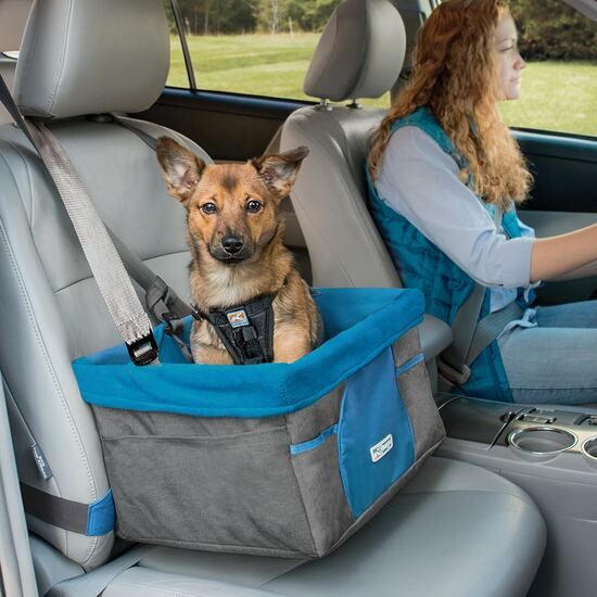 Dog Booster Seat Charcoal 89605.1584727792 I Love Veterinary - Blog for Veterinarians, Vet Techs, Students