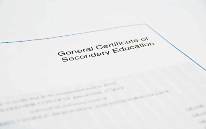 General Certificate of Secondary Education, what you need for vet tech programs - I Love Veterinary