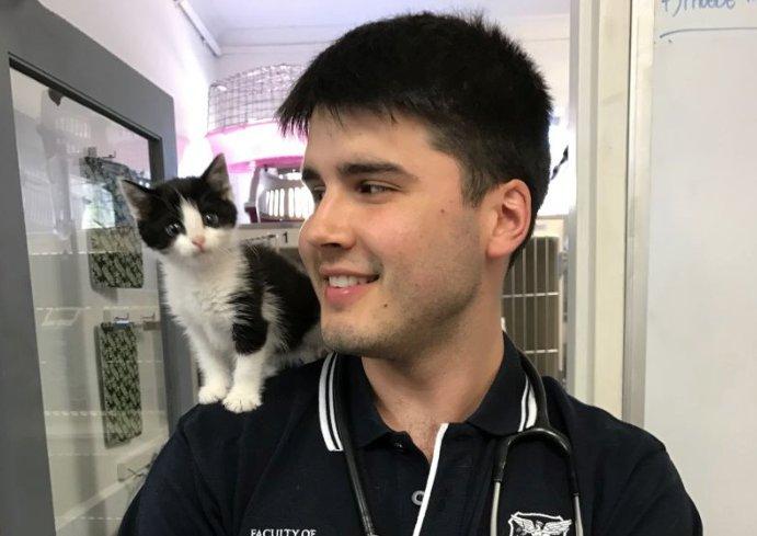 Mark 2 I Love Veterinary - Blog for Veterinarians, Vet Techs, Students