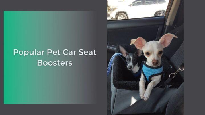 Popular Pet Car Seat Boosters - I Love Veterinary