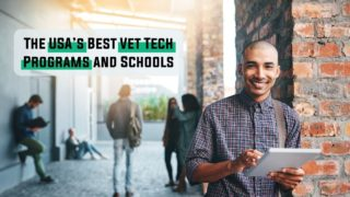The USA's Best Vet Tech Programs and Schools - I Love Veterinary