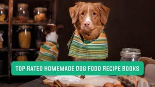 Top Rated Homemade Dog Food Recipe Books - I Love Veterinary