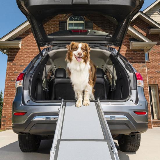 PetSafe Solvit Telescopic Dog Ramp