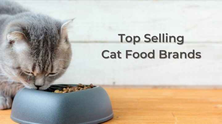Top Selling Cat Food Brands by I Love Veterinary on chewy.com and dog.com by i love veterinary