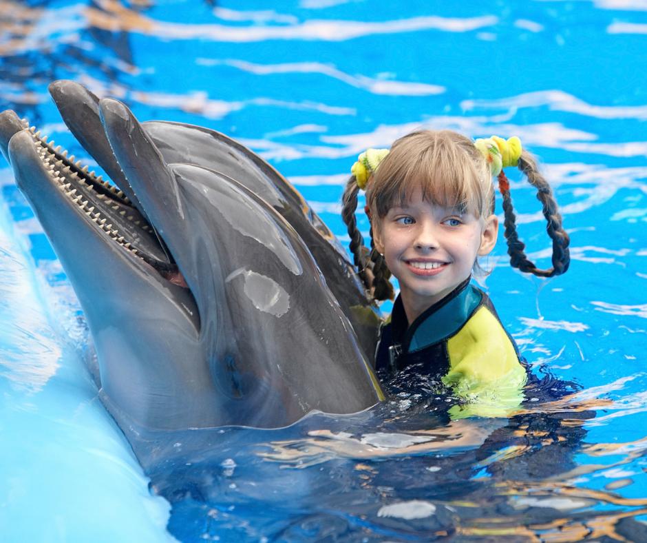 little girl riding a dolphin