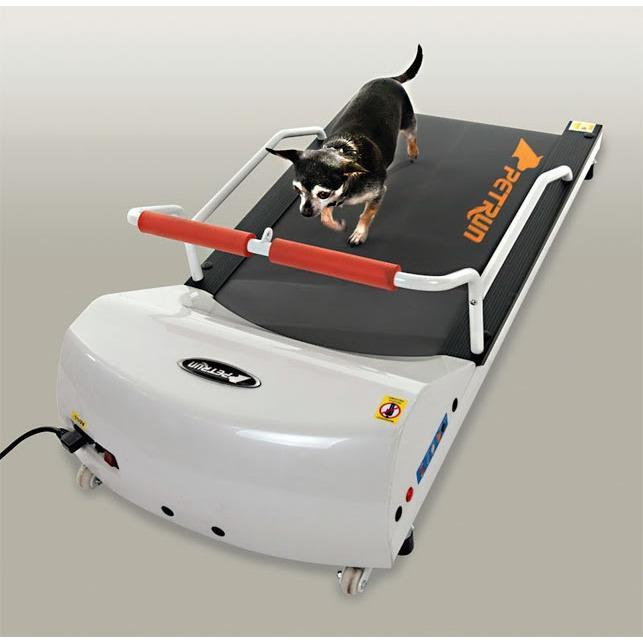 treadmills gopet petrun pr700 treadmill for small dogs I Love Veterinary - Blog for Veterinarians, Vet Techs, Students