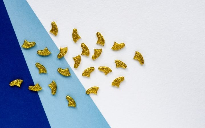 Cat nail caps as an alternative for onychectomy - I Love Veterinary