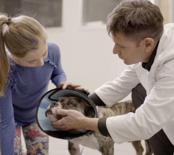 Dr. Chris Carpenter with vet tech and dog - I Love Veterinary