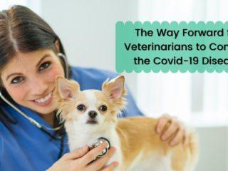 The Way Forward for Veterinarians to Combat the Covid-19 Disease - I Love Veterinary