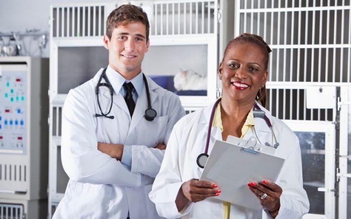Veterinarians with list at vet clinic - I Love Veterinary