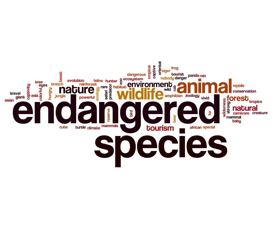 endangered species day