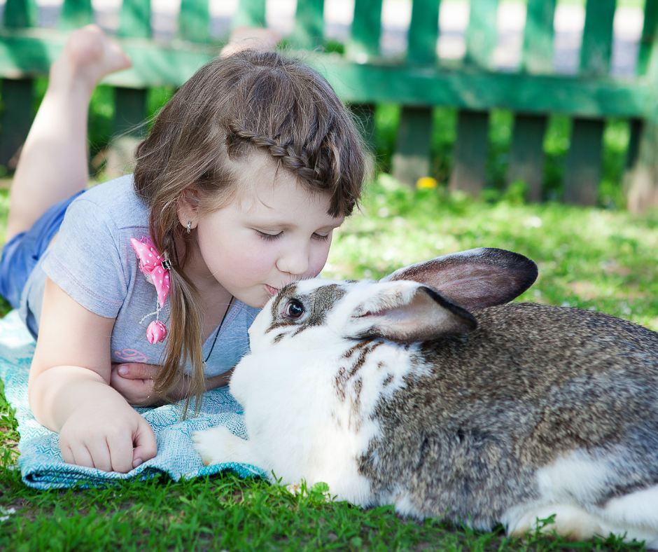 little girl lying on the grass with her pet rabbit