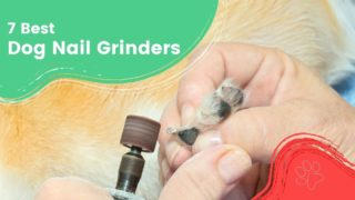 7 Best Dog Nail Grinders by I Love Veterinary