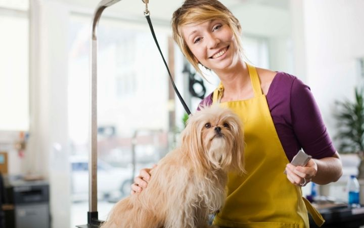 Female groomer with a dog - I Love Veterinary